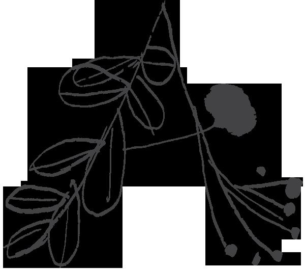 Aromaterapie Brno